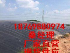 43590.4301789352_1-1P311141A31B-lp.jpg